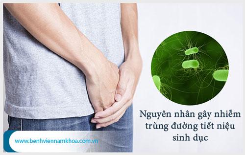 Nguyên nhân gây nhiễm trùng đường tiết niệu sinh dục